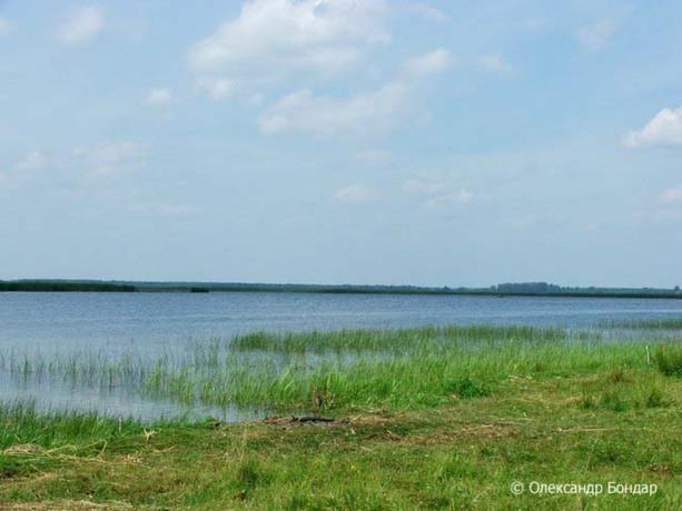 Озеро Світязь